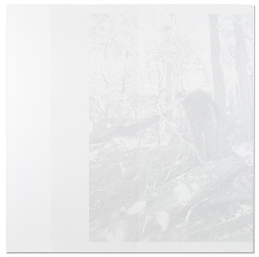 Stratal, 2010, Cameron Martin